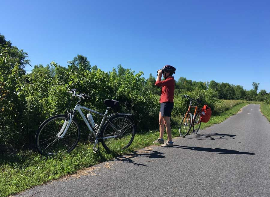 Cyclists stop at the waterfront trail to birdwatch during Cornwall multi-day bike tour by Escape tours rentals