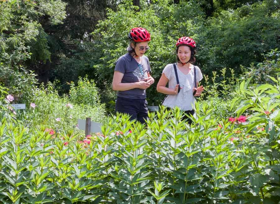 2 friends are walking through an Ottawa gardens and looking at plants during Escape garden promenade bike tour in Ottawa