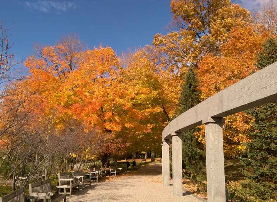 View of the Rockcliffe Park with Fall colours on trees while cycling to Petrie Island with Escape self-guided bike tour in Ottawa